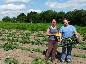 Biolandhof-Grossholz-Unsere-Arbeit-Zucchiniernte