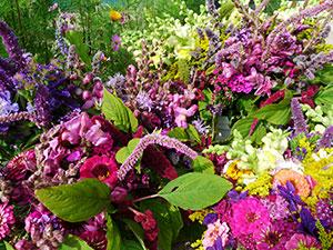 Biolandhof-Grossholz-Vermarktung-Wochenmarkt-Blumen