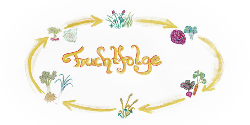 Biolandhof-Grossholz-Fruchtfolge-Titel